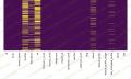 Python推特机器人分类数据集(2017 Kaggle NYU)下载