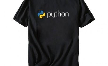 374路夏极客风短袖T恤男士纯棉宽松上衣python印花文字青年程序员