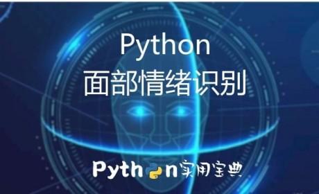 Python 超简单实现人类面部情绪的识别